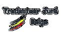 www.traducteur-jure-belge.be